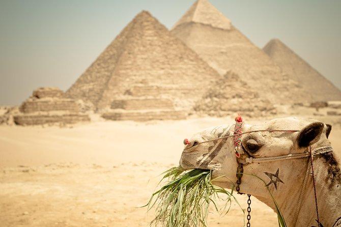 Private Day Tour to Giza Pyramids, Saqqara & Dahshur