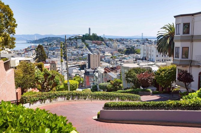 San Francisco Airport Transfers : San Francisco to Airport SFO in Business Car