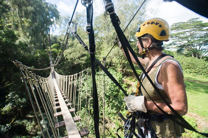 Big Island Kohala Canopy Zipline Adventure