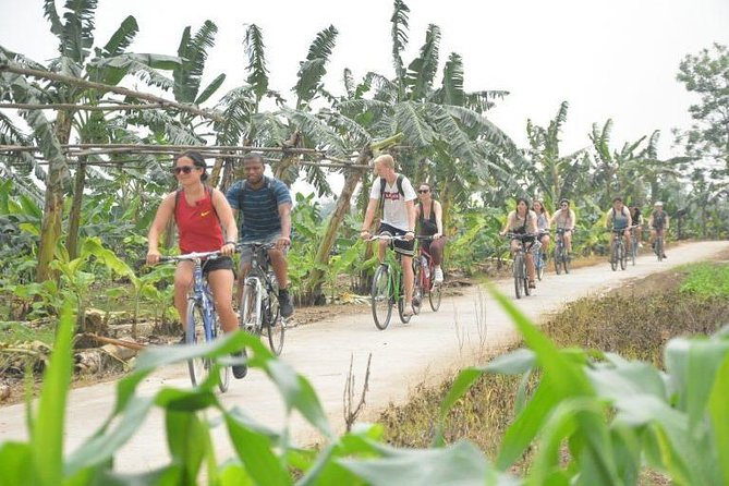 Half-Day Red River Banana Fields Guided Cultural Tour by Bike