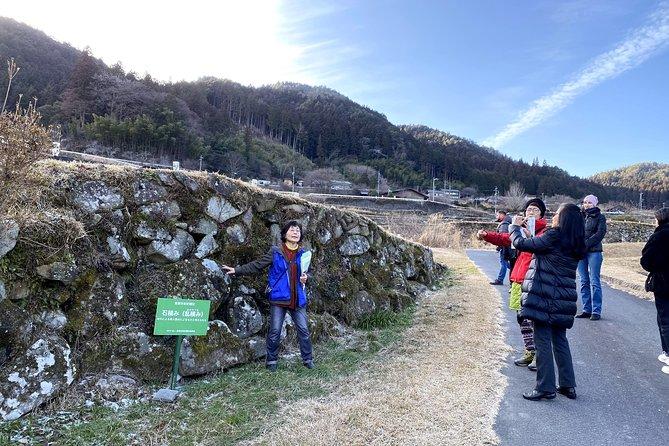 Sakaori Terraced Rice Fields Walking and Onigiri Making Tour in Ena