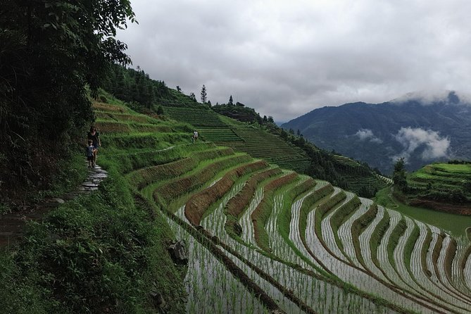 1-Day Longji Terrace Fields-Pingan village Tour with the English Speaking Driver