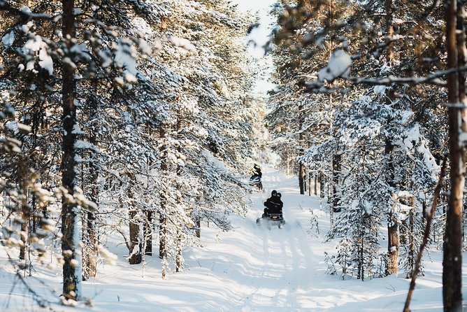 Snowmobiling through the Arctic Circle Forest
