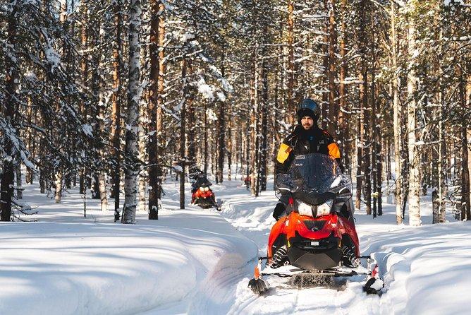 Snowmobile Safari into the Arctic Circle Forest