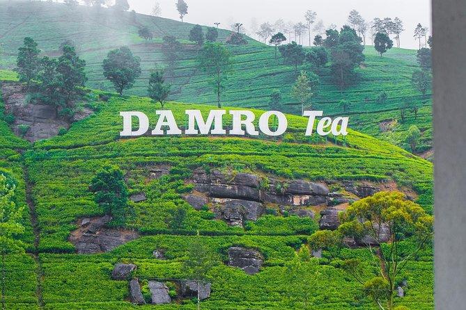 Ramboda falls and Tea factory Tour