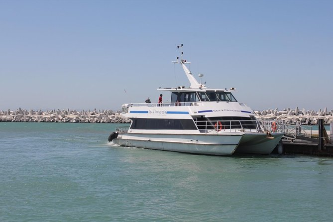 ( Cape Town Private Tour ) Robben Island and Table Mountain Cable Car