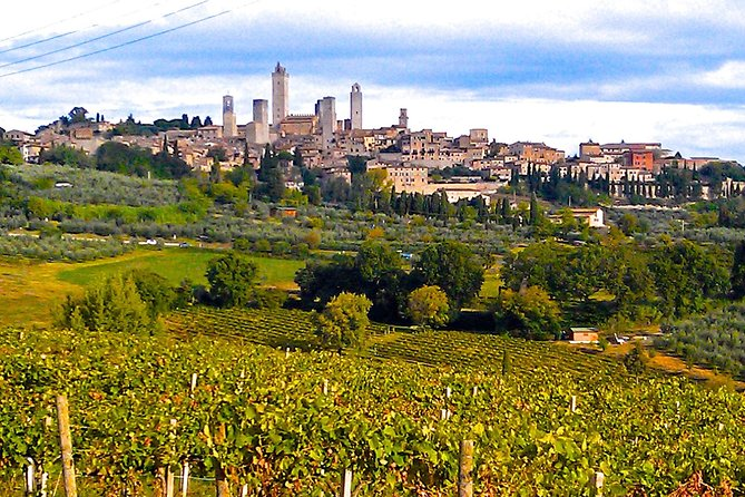 San Gimignano Full-Day Private Tour with Wine Tasting