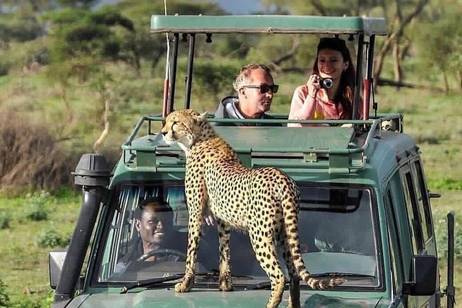 6-Day Ngorongoro crater, Serengeti and Manyara National park