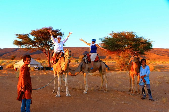 From Ouarzazate: Private 12 Days-Trekking in Draa Valley and Erg Chegaga dunes
