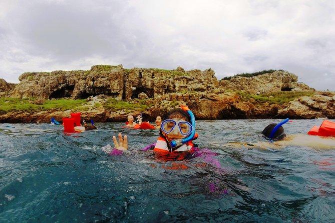 MARIETAS ISLANDS: Snorkling, sjøfugler og skjult strand (valgfritt)