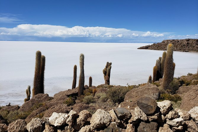 Salar de Uyuni private tours (3 days)