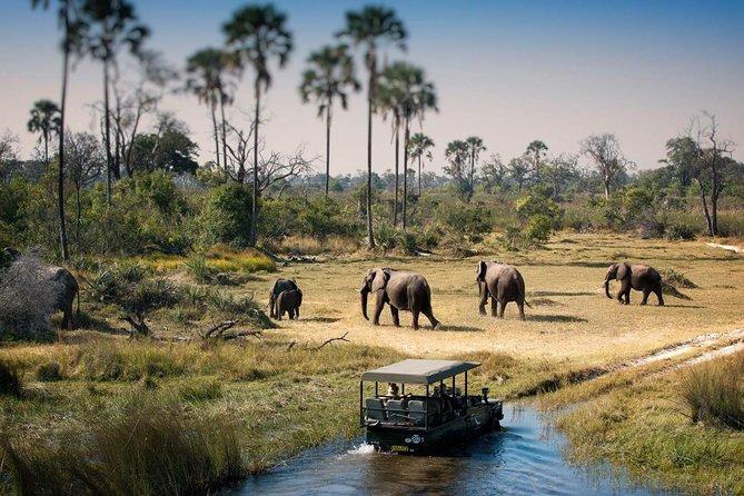 Victoria Falls & Chobe Safari (4 days)