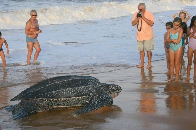 1 Night, 2 Days - PACUARE + Pacuare Reserve (Near to Tortuguero National Park)