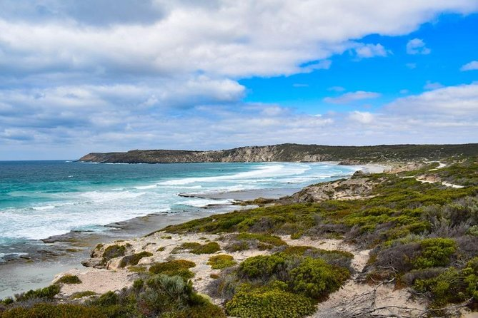 Kangaroo Island Luxury Small Group 'East End Explorer' Full Day Tour