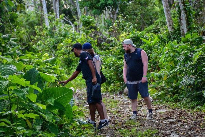 Hiking and Walking Tour Punta Cana