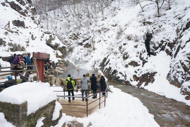 Snow Monkey and Zenko-ji Winter Tour From Nozawa/Iiyama