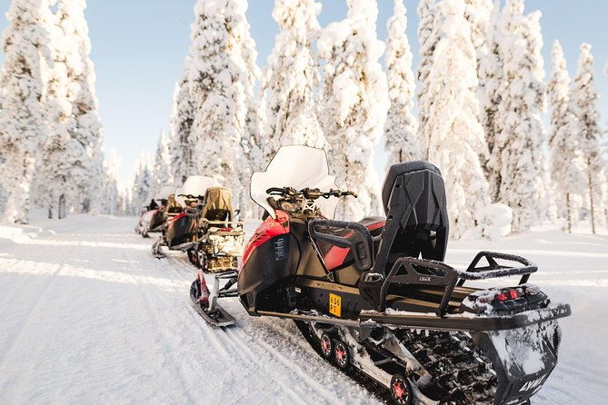 Full Day Snowmobile Safari with Lunch