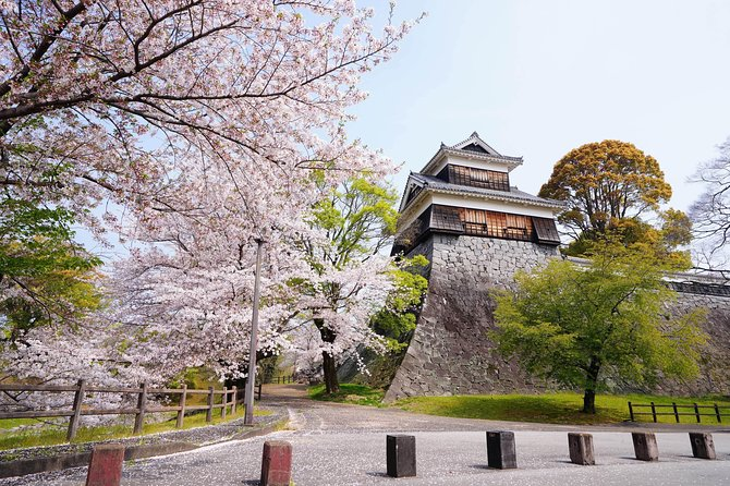 Kumamoto Custom Half Day Tour