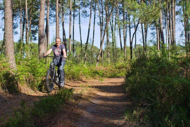 Bike ride in South Gironde