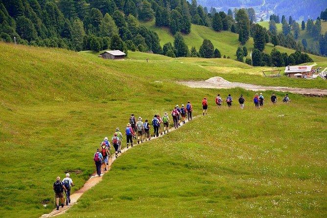 """Camino de Santiago"": PORTUGUESE WAY. Private Walking Tour from Tui"