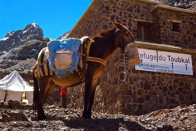 Full-Day Private Sightseeing Hiking Tour to Imlil and Toubkal