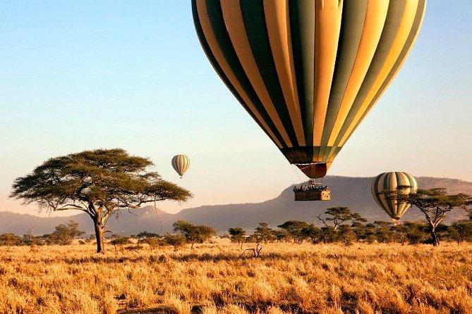 Serengeti & Balloon Safari | 3 Days