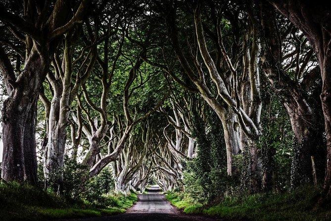 BelfastBlackTaxiTour Game of Thrones North Coast 8 hour Tour