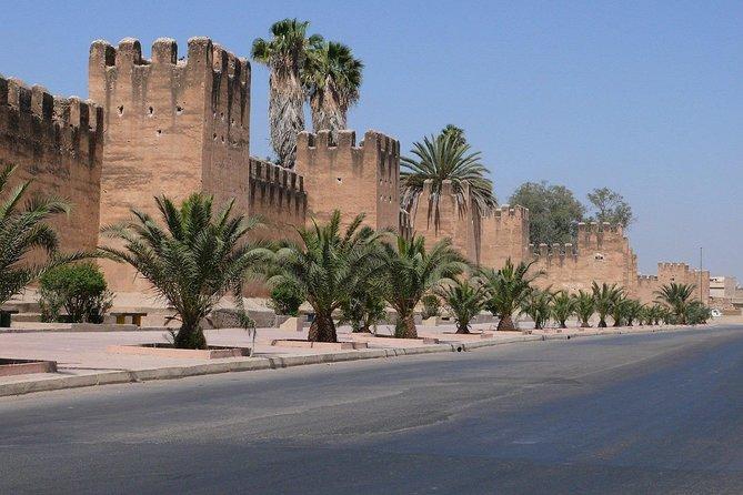 Taroudant & Oasis Tiout Excursion from Agadir