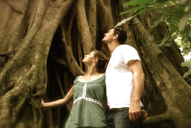 Port Douglas Daintree National Park Boutique Full-Day Tour