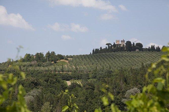 Grand Tour of Chianti