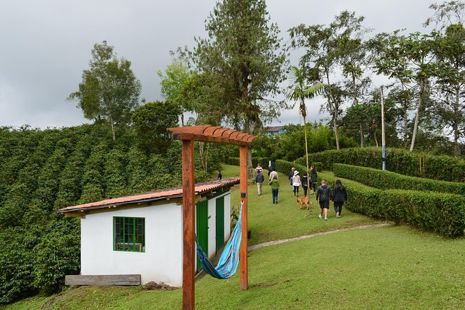 Coffee Plantations & Middle of the World Experience