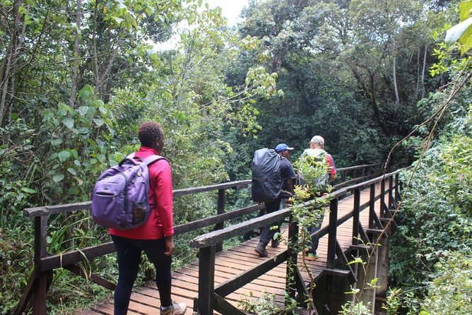 9-Day Private Guided Hiking Tour of Kilimanjaro - Lemosho Route