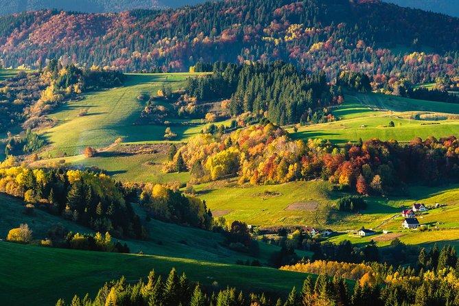 Orava region