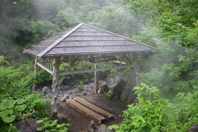Full-Day Private Guided Japanese Hot Spring Experience