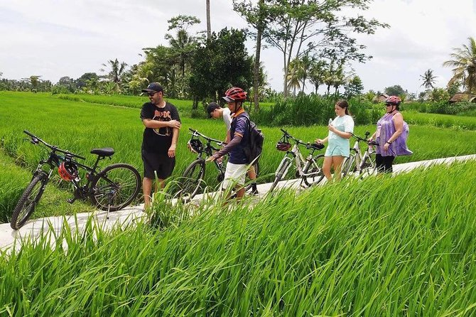 Full-Day Private Bali Cycling and ATV Ride Adventures
