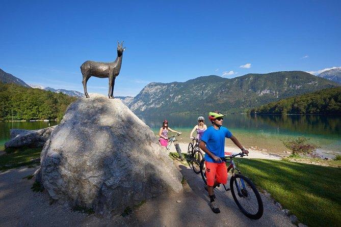 Self-guided Cycling Tour from Pokljuka to Lake Bohinj
