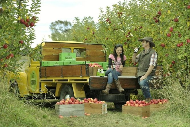 Blue Mountains Botanic Garden and Bilpin Tour from Katoomba with Cider Tasting