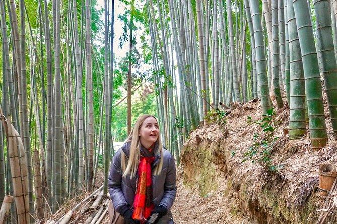 Fushimi Inari shrine & Sanjusangendo temple, thousands of gates and statues
