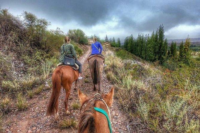 Horseback ride through vineyards followed by gourmet asado lunch