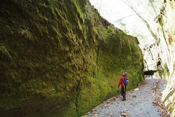 Private Full-Day Tour of Lake Shikotsu and Moss Canyon