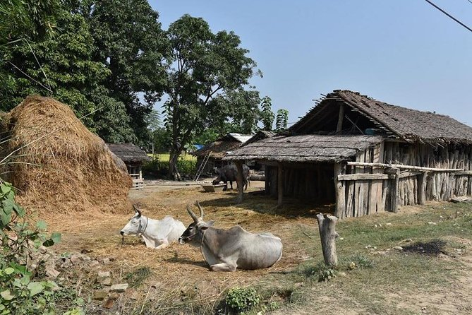 5 Days Exclusive Exposure To Learn Ancient Rural Farming Near Pokhara Valley