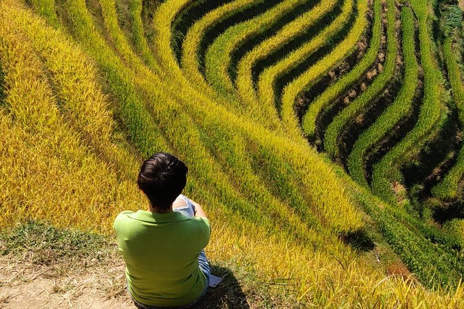 7-Day Private Tour from Beijing to Guilin, Longji Terraces,Sanjiang and Yangshuo