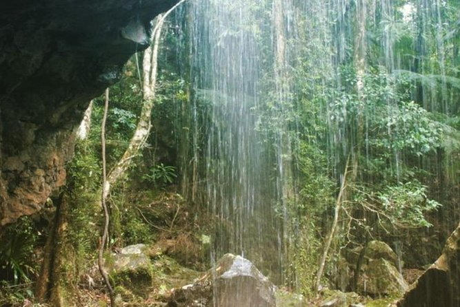 Full-Day Guided Sightseeing Tour of the Gold Coast Waterfalls