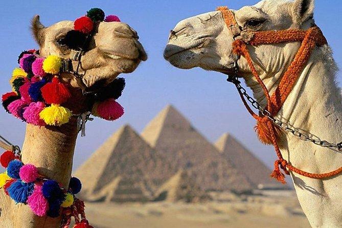 Cairo : Giza Pyramids ,Sphinx , Sakkara & Memphis Full-Day Tour with Camel Ride