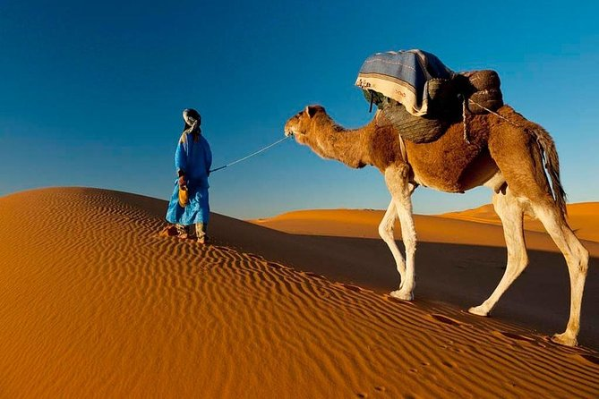 7-Day Private Guided Cultural Tour of Morocco from Casablanca