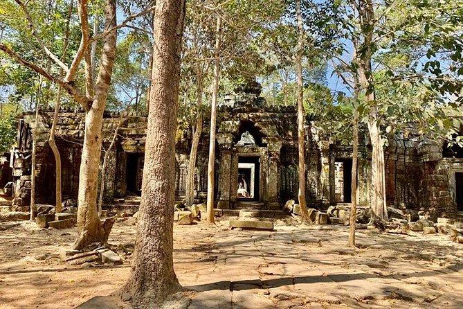 Ta Prohm Temple Tomb Raider Tour