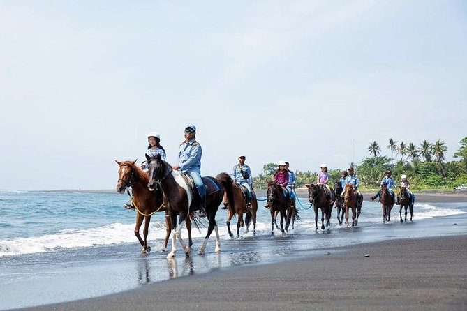 Full-Day Horse Riding and Quad Bike Adventure in Bali