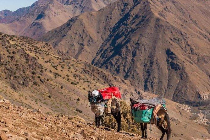 5-Days Private Atlas Mountains Trek from Marrakech