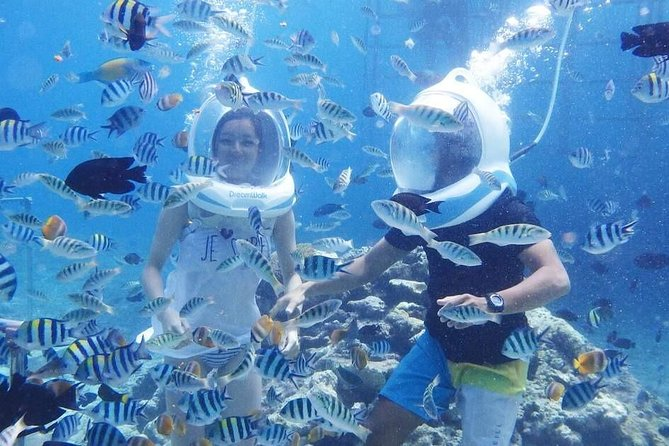 Bali Tanjung Benoa Sea Walker Private Experience