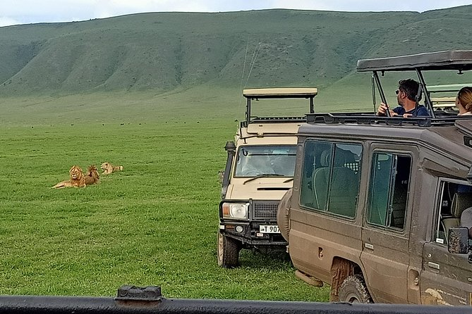 4-Day Private Wildlife Safari Tour from Arusha with Meals